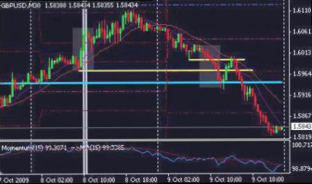 Kenapa Harus Exchange Traded Fund (ETF)? | cryptonews.id